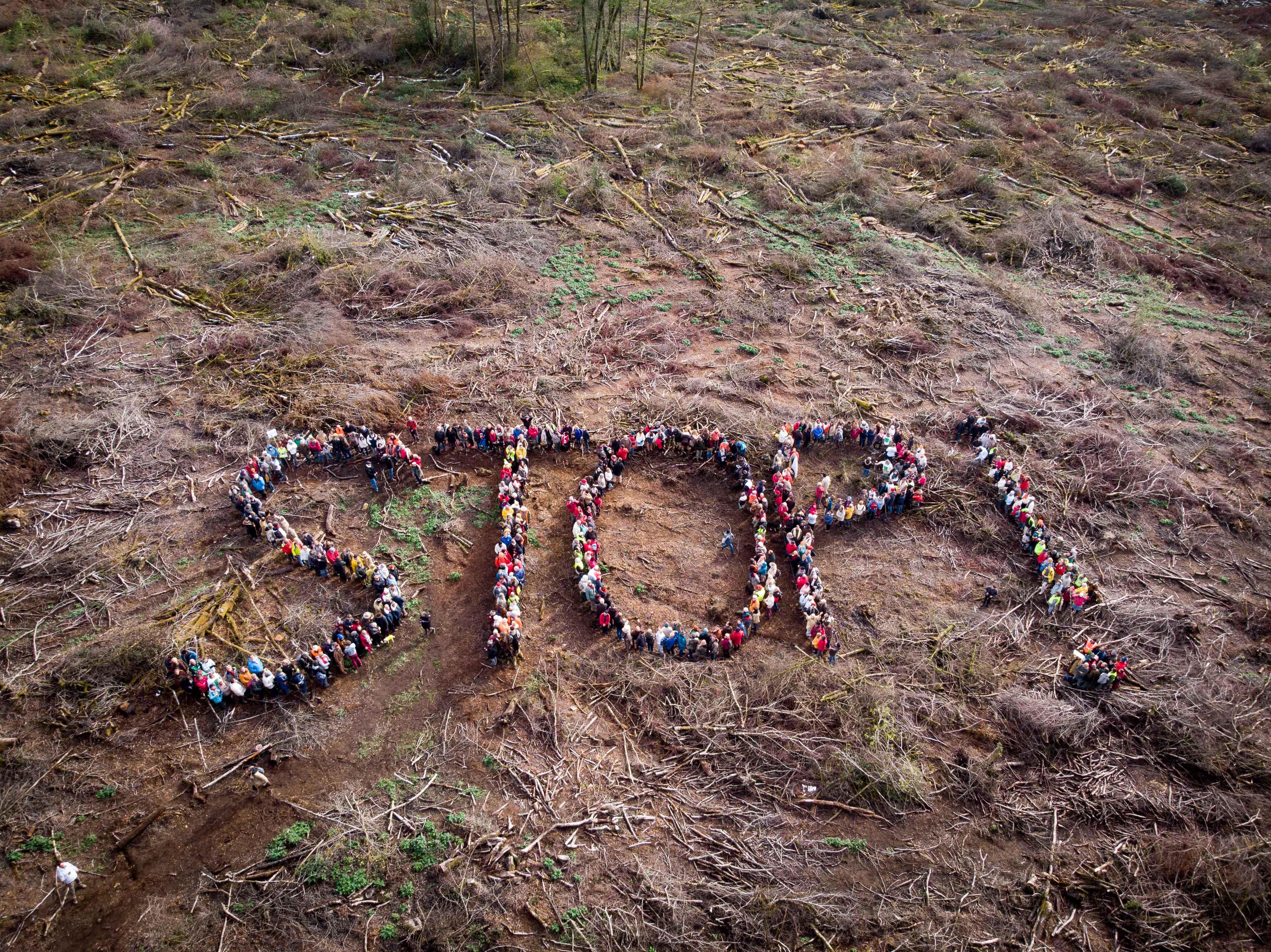 Dans le Morvan, 500 citoyens forment un STOP! contre les coupes rases